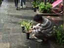 Yunnan20080116