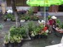 Yunnan20080120