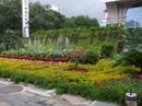 Yunnan20080437_800