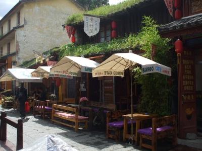 Yunnan20080129_800_2